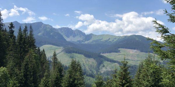Svidovské sedlo - výhľady na Nízke Tatry
